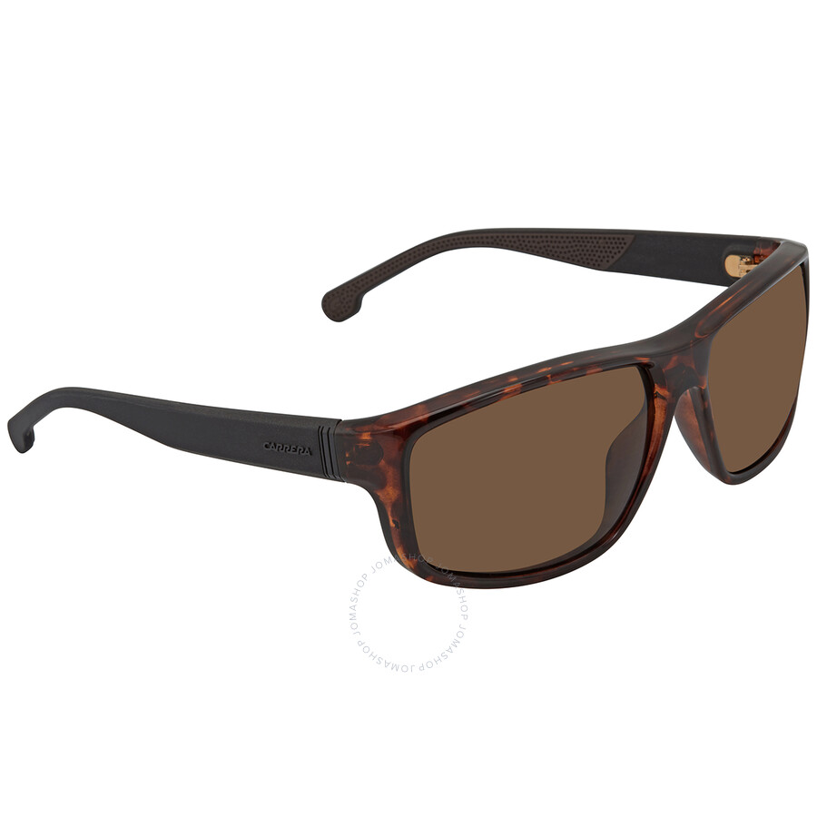 Authentic Carrera 8038//S 0086//SP Dark Havana//Bronze Polarized Sunglasses
