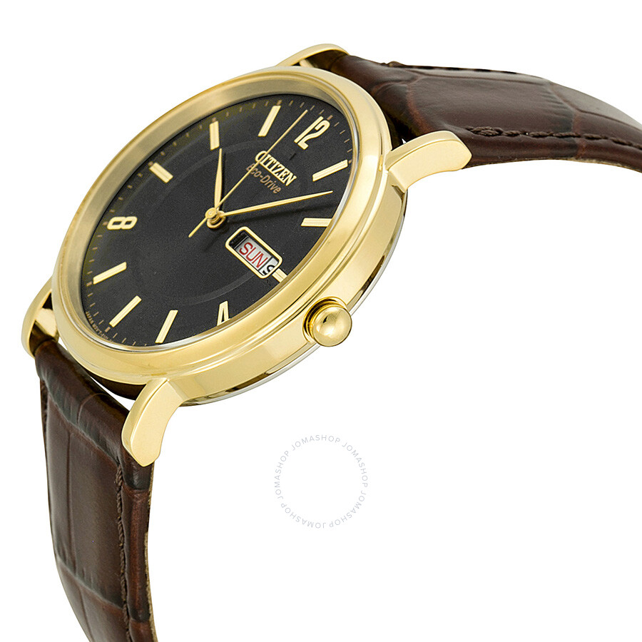 Citizen eco drive black dial gold tone stainless steel brown leather men 39 s watch bm8242 08e for Gold timepieces watch