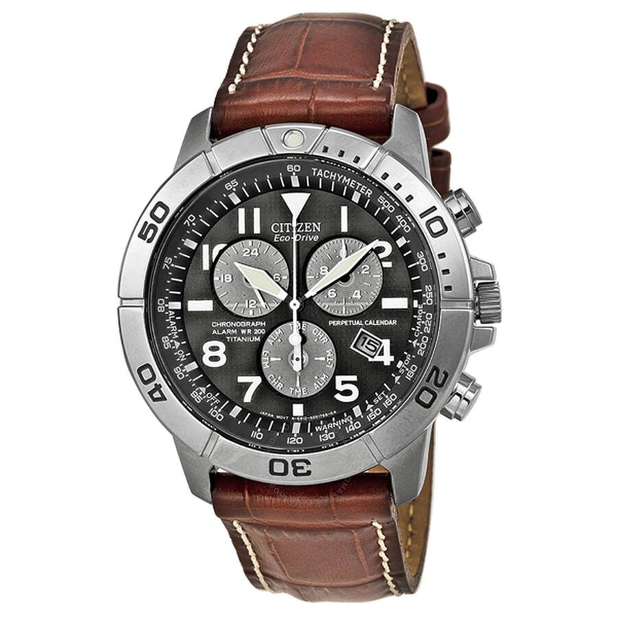 citizen eco drive perpetual calendar chronograph s