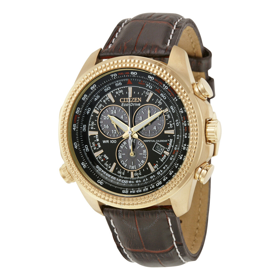 Perpetual Calendar Watch : Citizen perpetual calendar chronograph men s watch bl