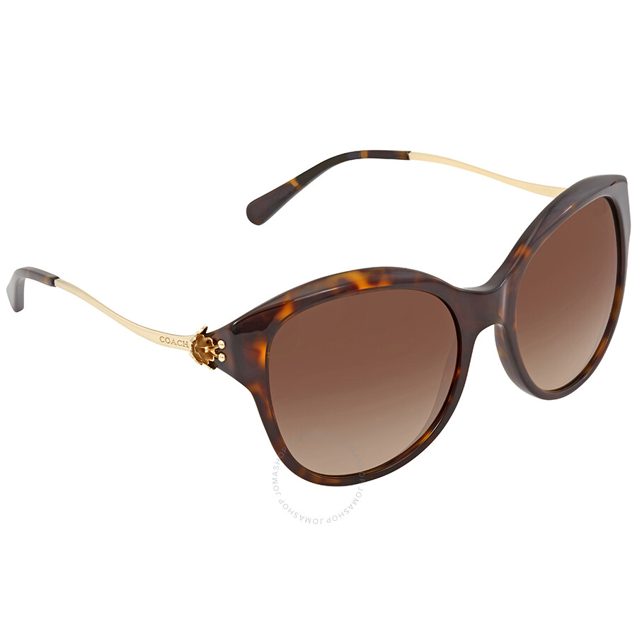 a7d3888f2bd0 Coach Brown Gradient Cat Eye Sunglasses - Coach - Sunglasses - Jomashop