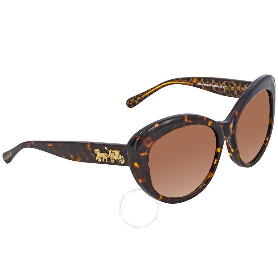 3b6895f20f Coach Brown Plastic Cat Eye Sunglasses HC8206F-539413-55 - Coach ...