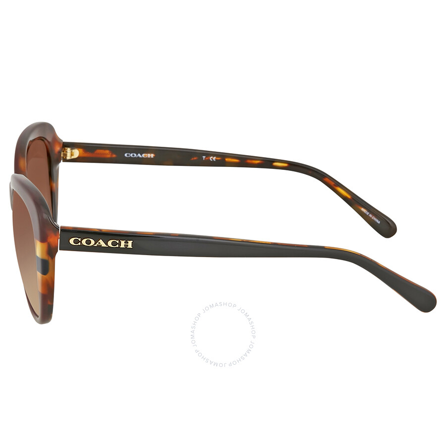 05b5a71f6890 ... aliexpress coach havana striped cat eye sunglasses 20379 821ba