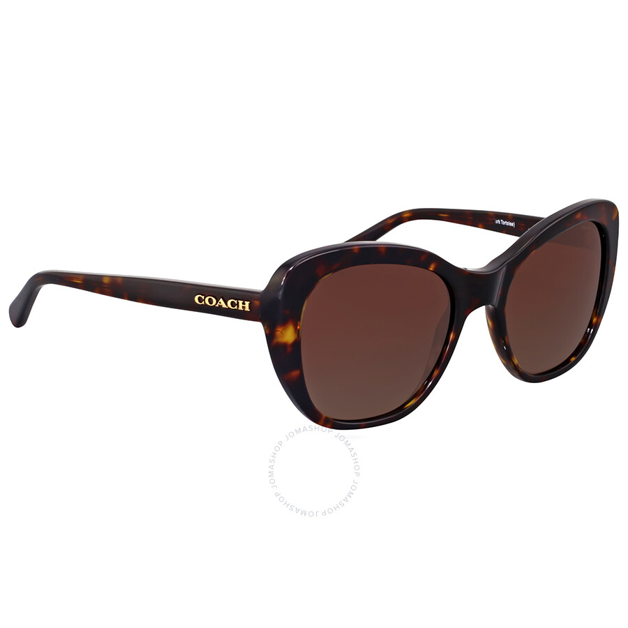 7966136270 Coach Polarized Brown Gradient Cat Eye Sunglasses Item No. HC8204-5120T5-52
