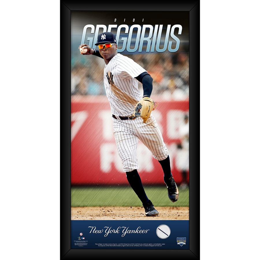 separation shoes bfa3e 6eed3 Didi Gregorius New York Yankees 10x20 Player Profile with Game Used Jersey  Swatch