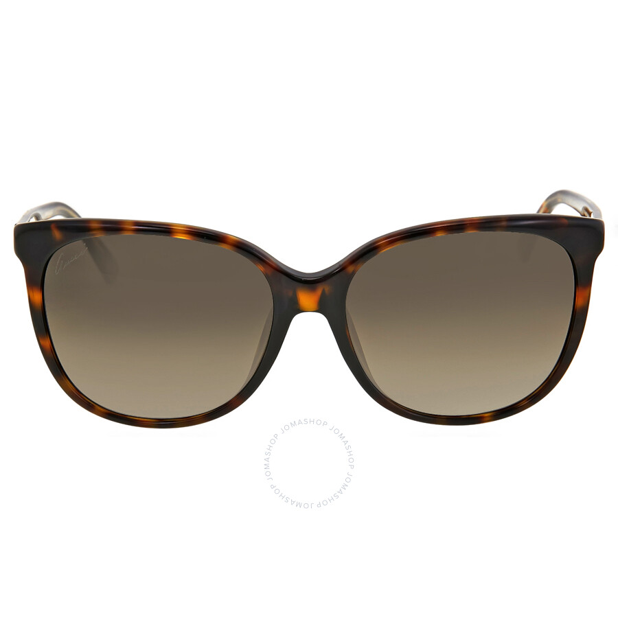 Gicci Sunglasses  gucci sunglasses joma