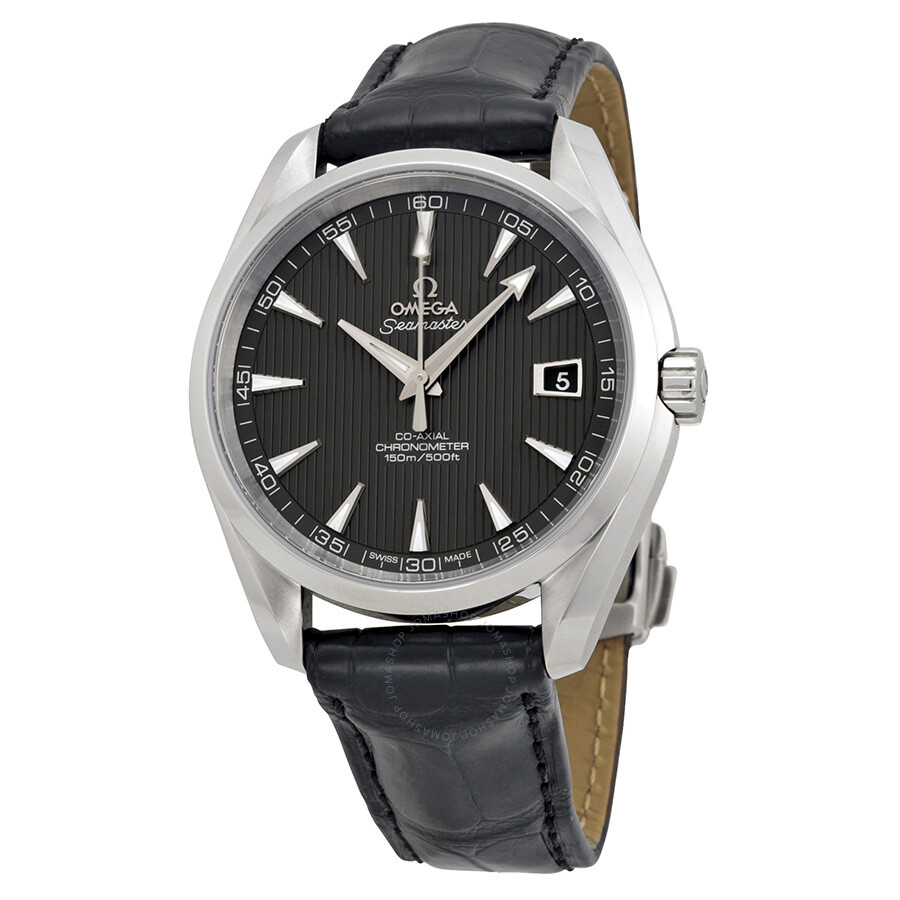 Omega Seamaster Aqua Terra Grey Dial Men's Watch 231.13.42 ...