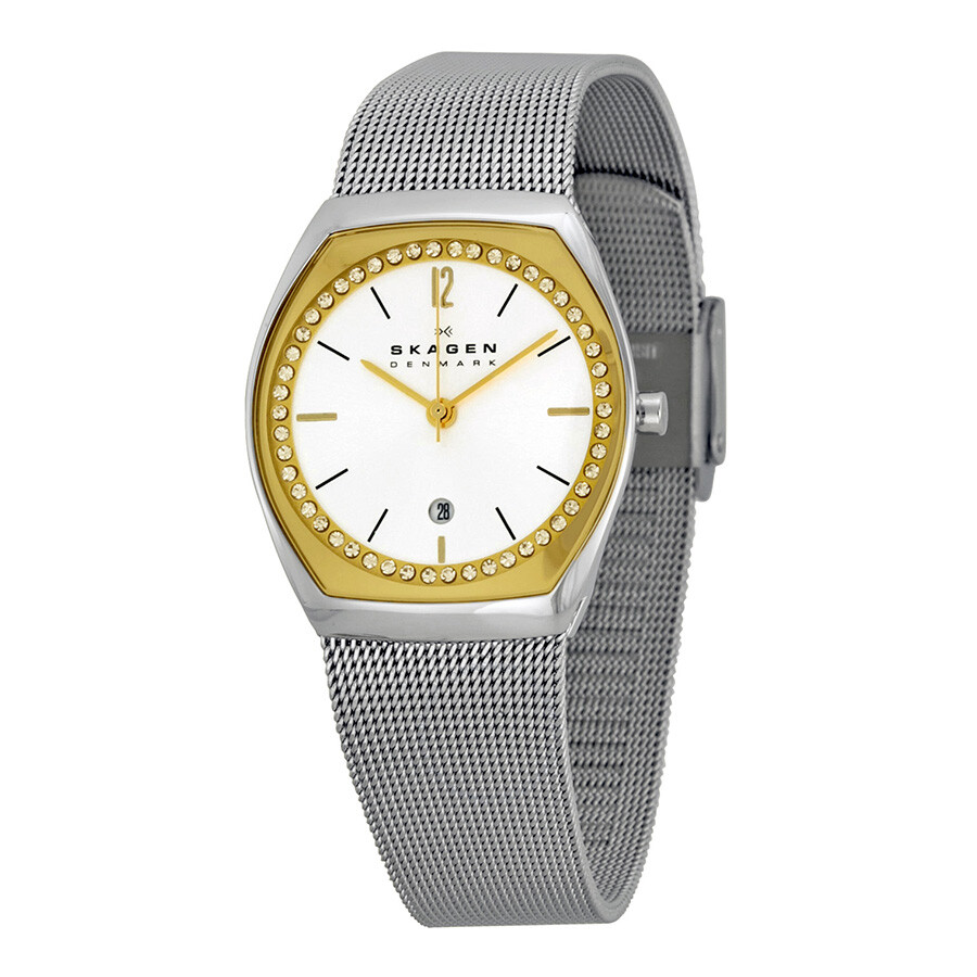 skagen asta silver and gold stailess steel mesh